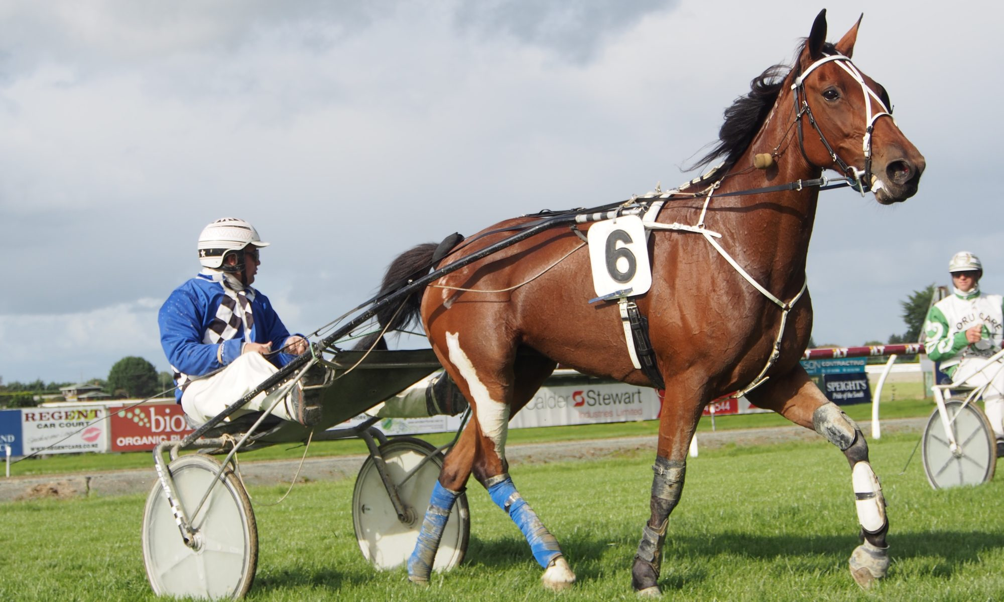 Southern Harness Racing